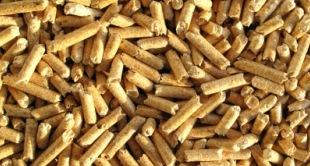 Alternative Energien: Holzpellets, regenerative Energien und Wärmepumpen